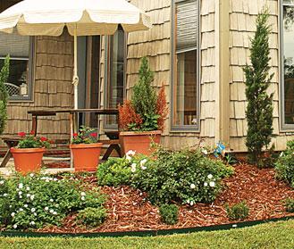 Arborists Plus Tree Experts Landscaping